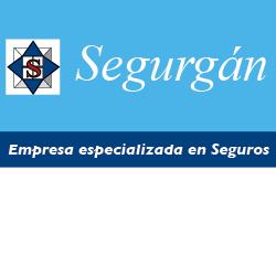 logo segurgan